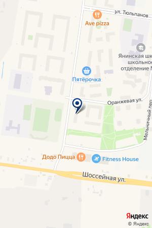 ДИКСИ на карте Янино 1