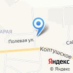 Бегемот на карте Санкт-Петербурга