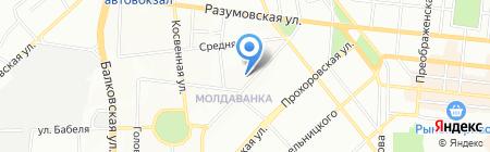 Твой свет на карте Одессы