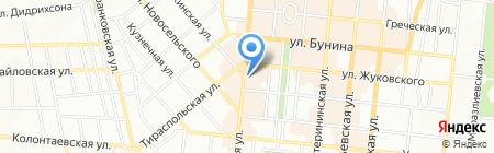 Жители блокадного Ленинграда на карте Одессы