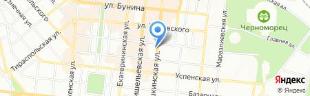 Зебра на карте Одессы