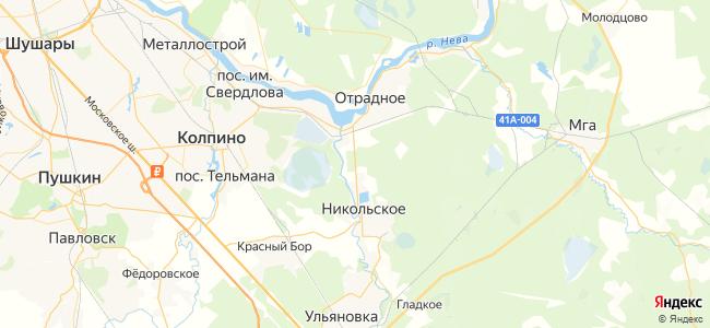 438 автобус в Никольском