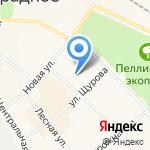 Родничок на карте Санкт-Петербурга