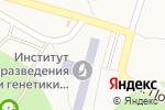 Схема проезда до компании Банкомат, Райффайзен Банк Аваль, ПАО в Чубинське