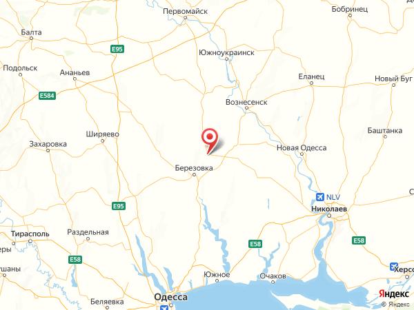 поселок городского типа Токаревка на карте