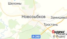 Гостиницы города Новозыбков на карте