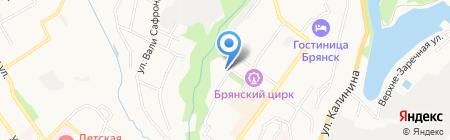 Кадр на карте Брянска