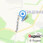 Золотой петушок на карте Петрозаводска