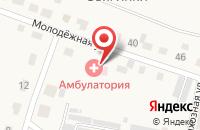 Схема проезда до компании Звягинская врачебная амбулатория в Звягинках