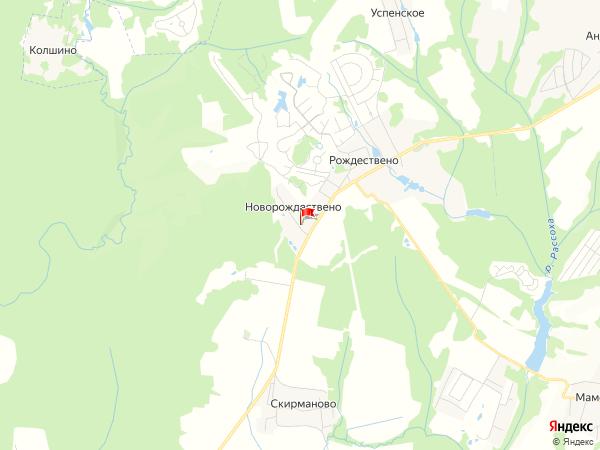 Карта населенный пункт Новорождествено