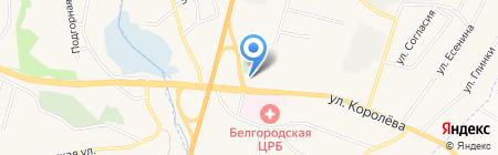Храм Вознесения Господня на карте Стрелецкого