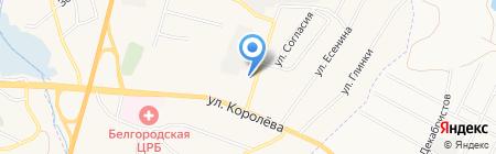 Ласточка на карте Стрелецкого