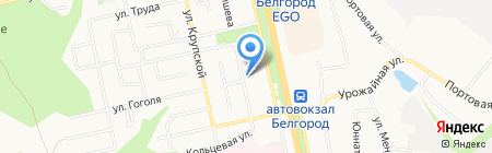 Пивной дворик на карте Белгорода