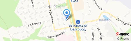 Орхидея на карте Белгорода