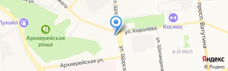 Кипарис на карте Белгорода