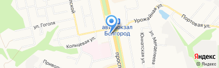 ИЗЫСК на карте Белгорода