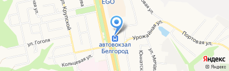 Айсберг на карте Белгорода