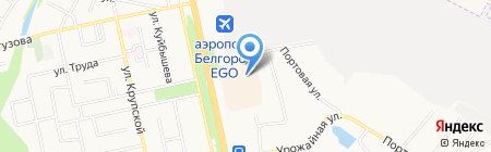 Лилли на карте Белгорода