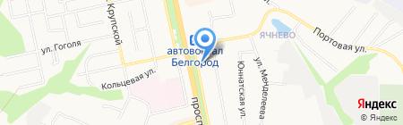 Солана на карте Белгорода