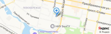 Эдельвейс на карте Белгорода
