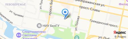 Языки мира на карте Белгорода