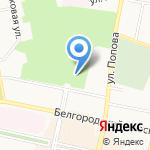 Тропикано на карте Белгорода