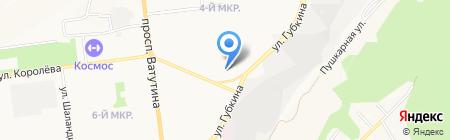 Котёнок ГАВ на карте Белгорода