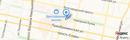33 пингвина на карте Белгорода