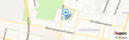 Гвоздика на карте Белгорода