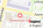 Схема проезда до компании Бел-Консалтинг в Белгороде