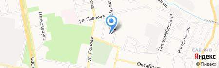 Котёнок на карте Белгорода