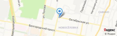 Магазин бытовой химии и парфюмерии на карте Белгорода