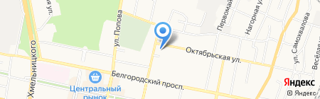 Независимая экспертиза на карте Белгорода