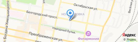 Колибри на карте Белгорода
