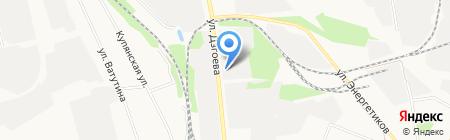 Кедр на карте Белгорода