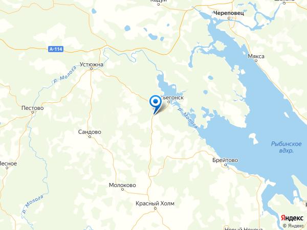 деревня Подлесное на карте
