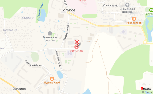 Карта расположения пункта доставки Пункт выдачи в городе Голубое