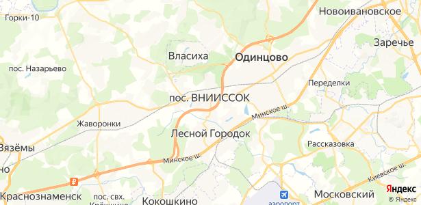 ВНИИССОК на карте
