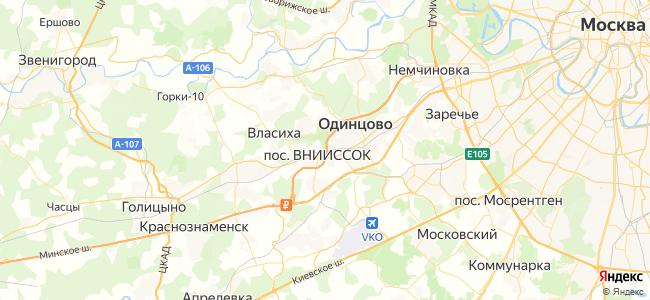 Москва Белорусская - Бородино электричка в Голицыно
