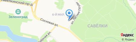 ТРИЗА-Спутник на карте Москвы