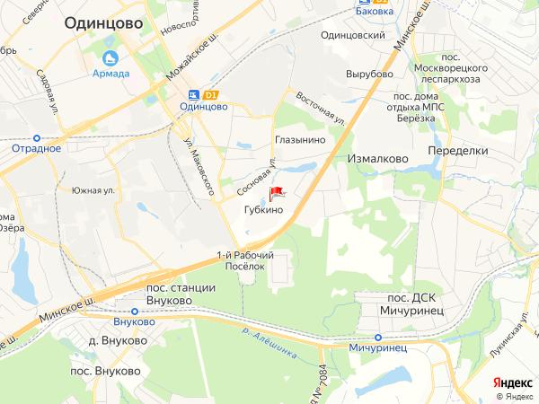 Карта населенный пункт Губкино