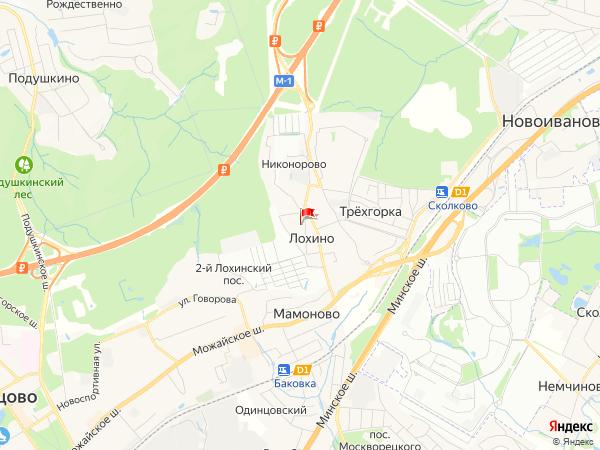 Карта населенный пункт Лохино
