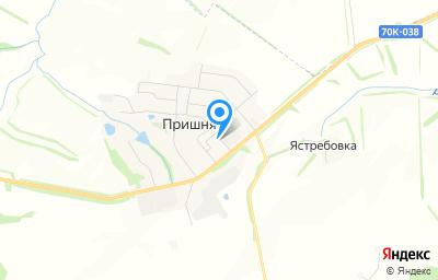 Местоположение на карте пункта техосмотра по адресу Тульская обл, Щекинский р-н, с Пришня, ул Парковая, д 5А