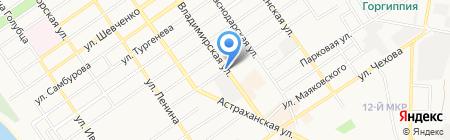 Барс на карте Анапы
