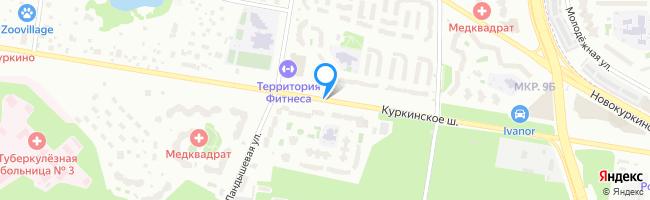 Куркинское шоссе