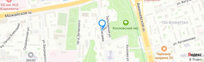 улица Вересаева