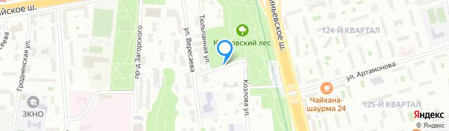 Тюльпанная улица