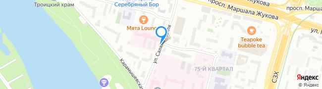 улица Саляма Адиля