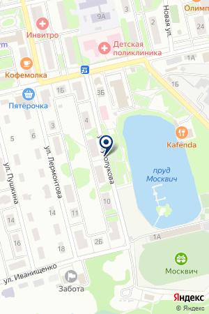 СТАДИОН МОСКВИЧ на карте Лобни