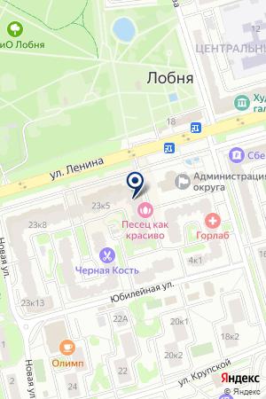 АПТЕКА РИГЛА на карте Лобни